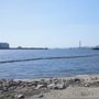 堺市_堺浜自然再生ふれあいビーチ